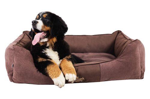 fotografia produktowa Kraków Packshot zdejcia priduktowe ze zwierzętami pies siedzący na poduszce